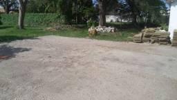 Plantio de grama Zeon