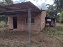 Chácara 50x50m  - setor chacareiro da Av. Raimundo Cantuária