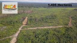 Excelente Fazenda à venda na Zona Rural do município de Apuí/AM