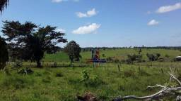 Título do anúncio: Fazenda à venda por R$ 38.400.000 - Zona Rural - Alta Floresta D'Oeste/RO