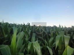Fazenda à venda, 1815000 m² por R$ 9.000.000 - Centro - Chopinzinho/PR