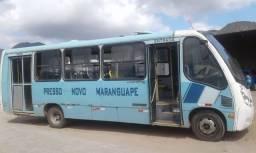 Micro onibus LO 915