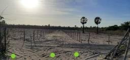 Terreno em Barra Grande