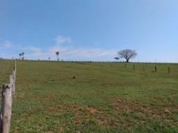 Bela área de 2 hectares, campo e acoxilhado e vertentes