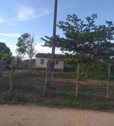 Título do anúncio: Sítio com Escritura  de um hectare em Lagoa do Itaenga