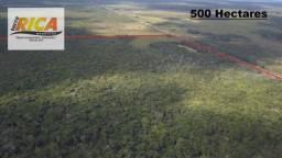 Fazenda com 500 Hectares na Zona Rural de Humaita/AM Cód-FA0178