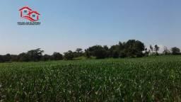 Fazenda Em Capinópolis No Triângulo Mineiro