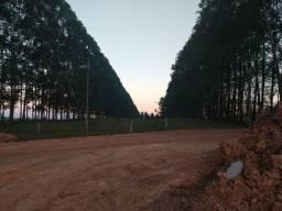 Fazenda 587 Alqueires Santa Fé do Araguaia To