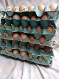 Vendo ovo colonial