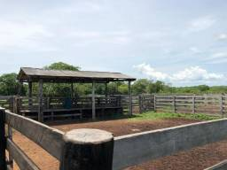 Fazenda em Gurupi