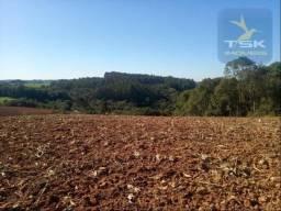 Chácara à venda, 79061 m² por R$ 440.000,00 - Zona Rural - Contenda/PR