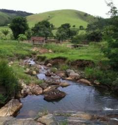 Fazenda rica em água ótimo para Gado - Cód 1505