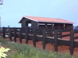 Aripuanã-MT=Vend. 6.700 P/ Hect=Fazenda com 45.000 Hectares - Dupla Aptidão