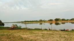 Belíssima Ilha em Pantanal do Mato Grosso do Sul Corumbá MS
