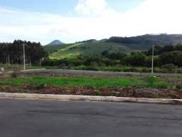 Terreno ilicinea