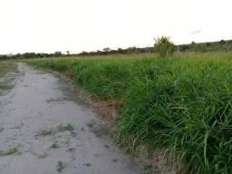 .  Fazenda 700 Alqueires em novo Acordo Tocantins