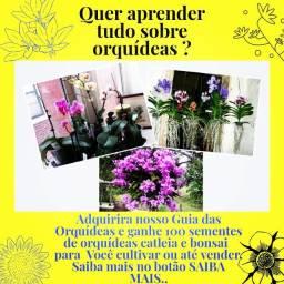 Manual das orquídeas