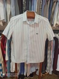 Camisa Lacoste manga curta número 42