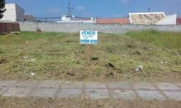 Terreno proximo Havan FRG