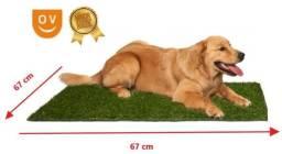 Tapete de Grama Sintética Verde Para Cães, Amor e Cuidado para seu Pet ( Pequeno )