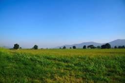 Fazenda em Apui-AM