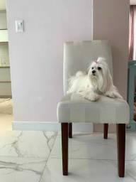Cadeira Para Mesa Jantar Branca Listradas