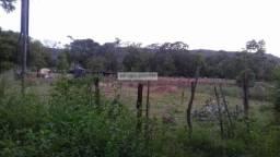 Terreno para Venda em Aquidauana, Piraputanga