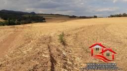 Fazenda Região de Cajuru/SP