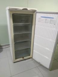 Freezer vertical