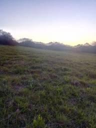 Chácara 15.5 hectares. Pinheiro Machado.
