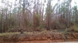 Terreno rural, sítio,fazenda com 69,4 hectares em Carandaí