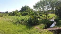 Amazon Garden- Terreno 18m X 60m