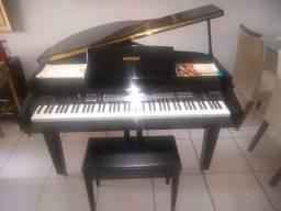 Título do anúncio: Piano digital 1/4 de calda Tokai TP-88C