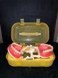 Título do anúncio: Manequim de dentistica PRONEW