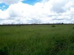 Fazenda em Morro do Chapéu - Chapada Diamantina