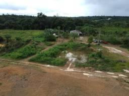 Fazenda 290 hectares com Platação de Açaí