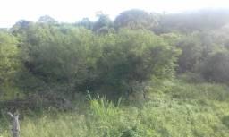 Fazenda em Itaberaba