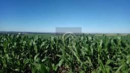 Fazenda à venda, 3726800 m² - Mangueirinha - Mangueirinha/PR