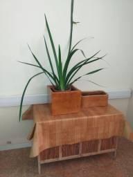 Vasos de cimento,para plantas