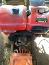 Motor Diesel Tramontini 16 Hp