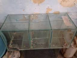 Aquario para betas ou alevinos sou de linhares