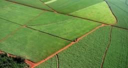 Fazenda Brodowsk - 41 Alqueires