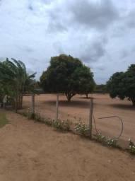 Granja em Mendes municipio de São José de Mipibu