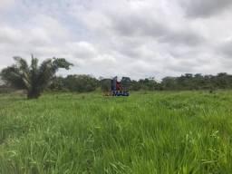Sítio à venda, por R$ 560.000 - Zona Rural - Alvorada D'Oeste/Rondônia