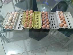 Ovos caipiras de alta qualidade em Itapoá