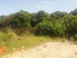 Terreno à venda, 311 m² por R$ 150.000,00 - Centro - Barra Velha/SC