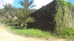 terreno 50x100 em aldeia km 8