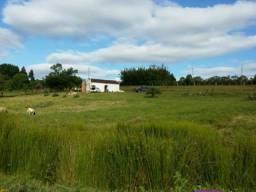 R- R- 413 Oportunidade Única Vendo Propriedade de 76.70 hectares com três casas no Cerrito