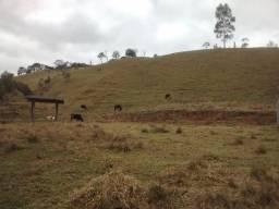Òtimo terreno de 8 alqueires em Marmelópolis Sul de Minas Gerais