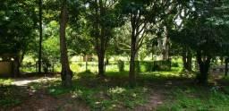 Fazenda 175 hectares em Planaltina DF